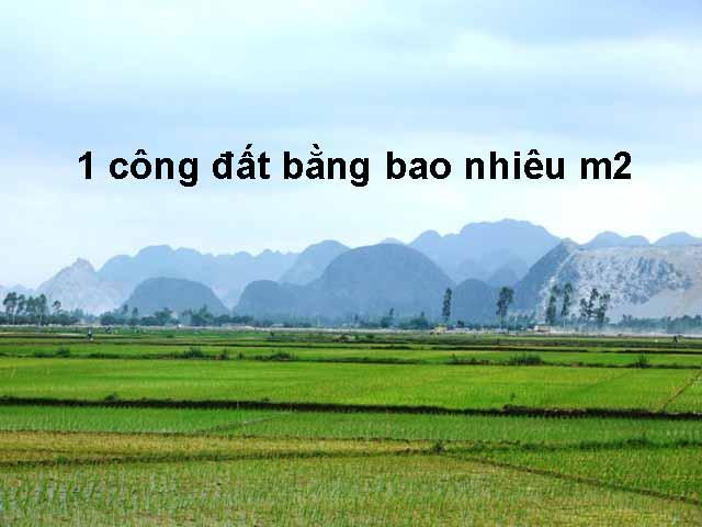 1-cong-dat-bang-bao-nhieu-m2