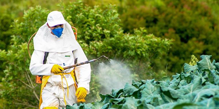 Quần áo bảo hộ phụn thuốc trừ sâu