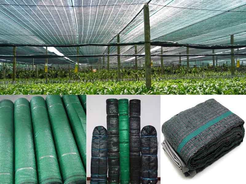lưới che nắng ở Hà Nội (1)