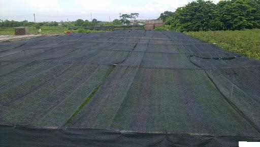 lưới che nắng trồng rau 02